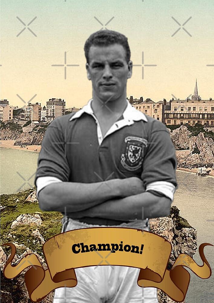 Champion! by Hywel Edwards