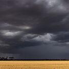 Walgoolan Thunderstorm by Matt Fricker