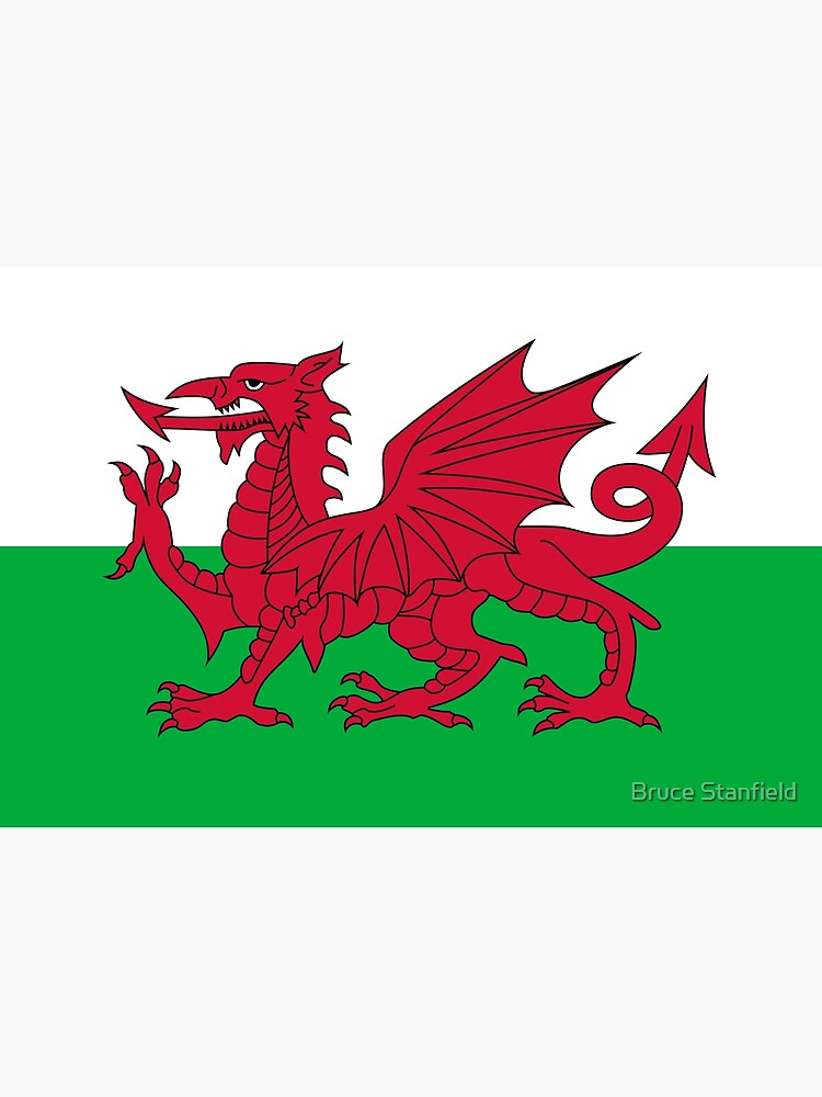 Flag of Wales - Welsh Flag by Bruiserstang
