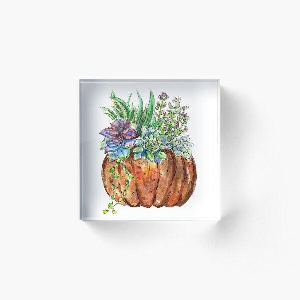 Watercolor Succulent Pumpkin  Acrylic Block