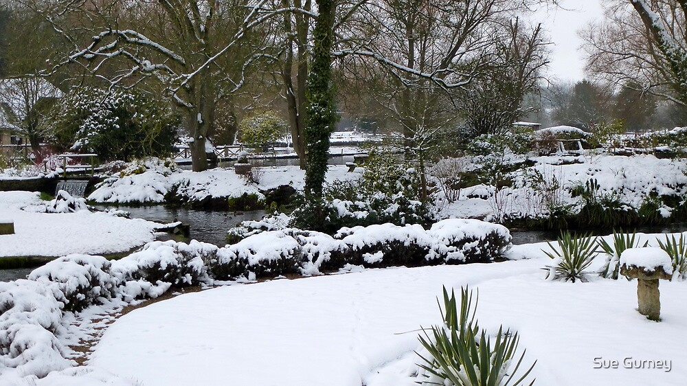 Wintertime in the Cotswolds by Sue Gurney