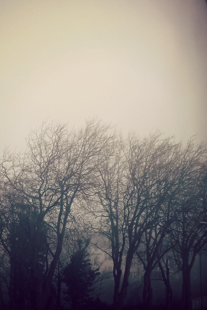 Winter fog by Ms-Bexy
