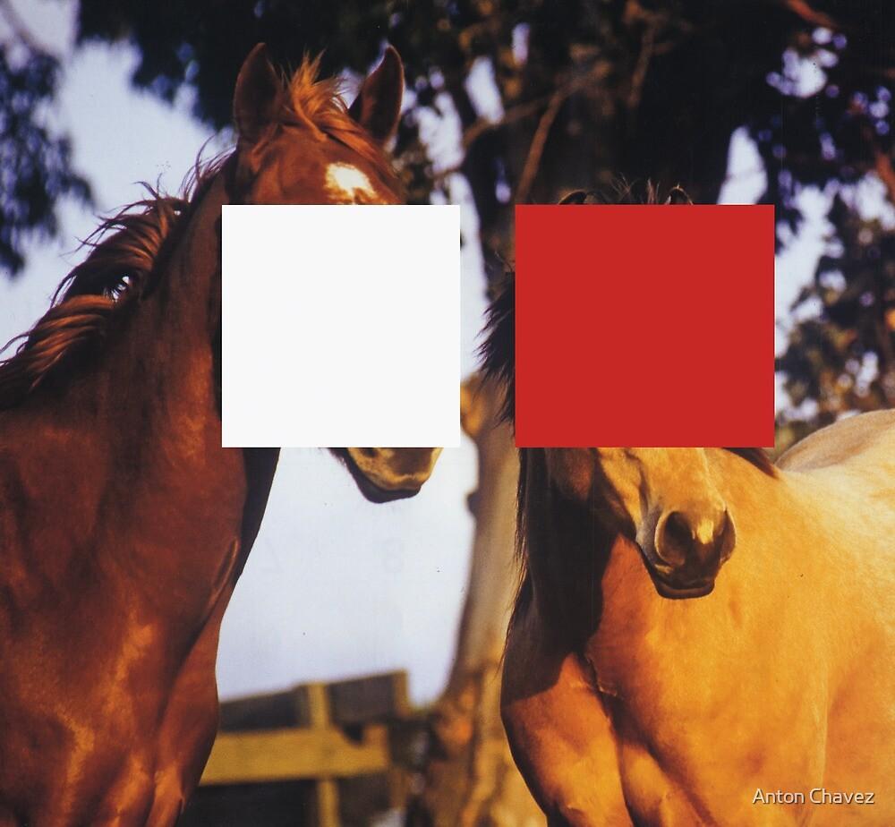 Horse2 by Anton Chavez