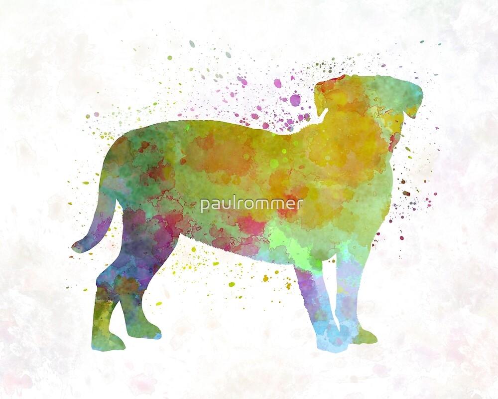 Dogo de Bordeaux in watercolor by paulrommer