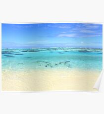 Heaven on Earth - Coral Reef  Poster