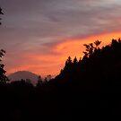 Sunrise by Nick Barber