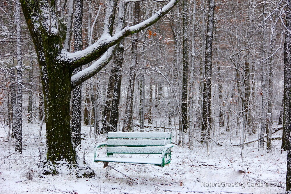Lonely Garden Swing.. by NatureGreeting Cards ©ccwri