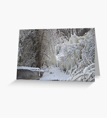Trees covered in Ice Greeting Card