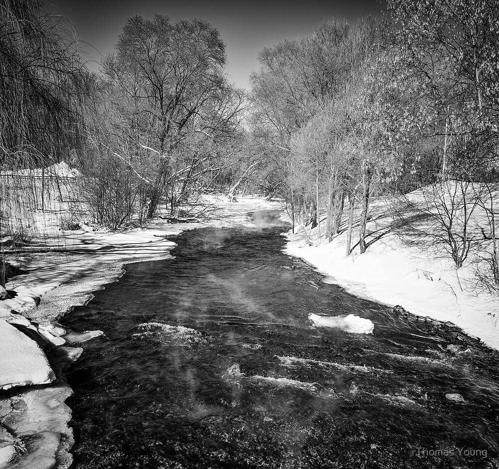 Cold Winter by Thomas Young