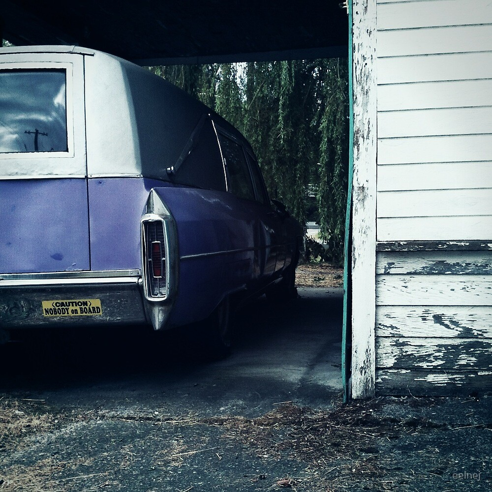 the purple hearse by eelnej