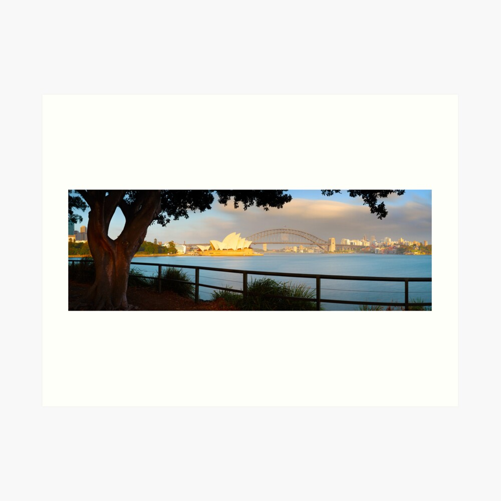 One Morning in Sydney, New South Wales, Australia Art Print