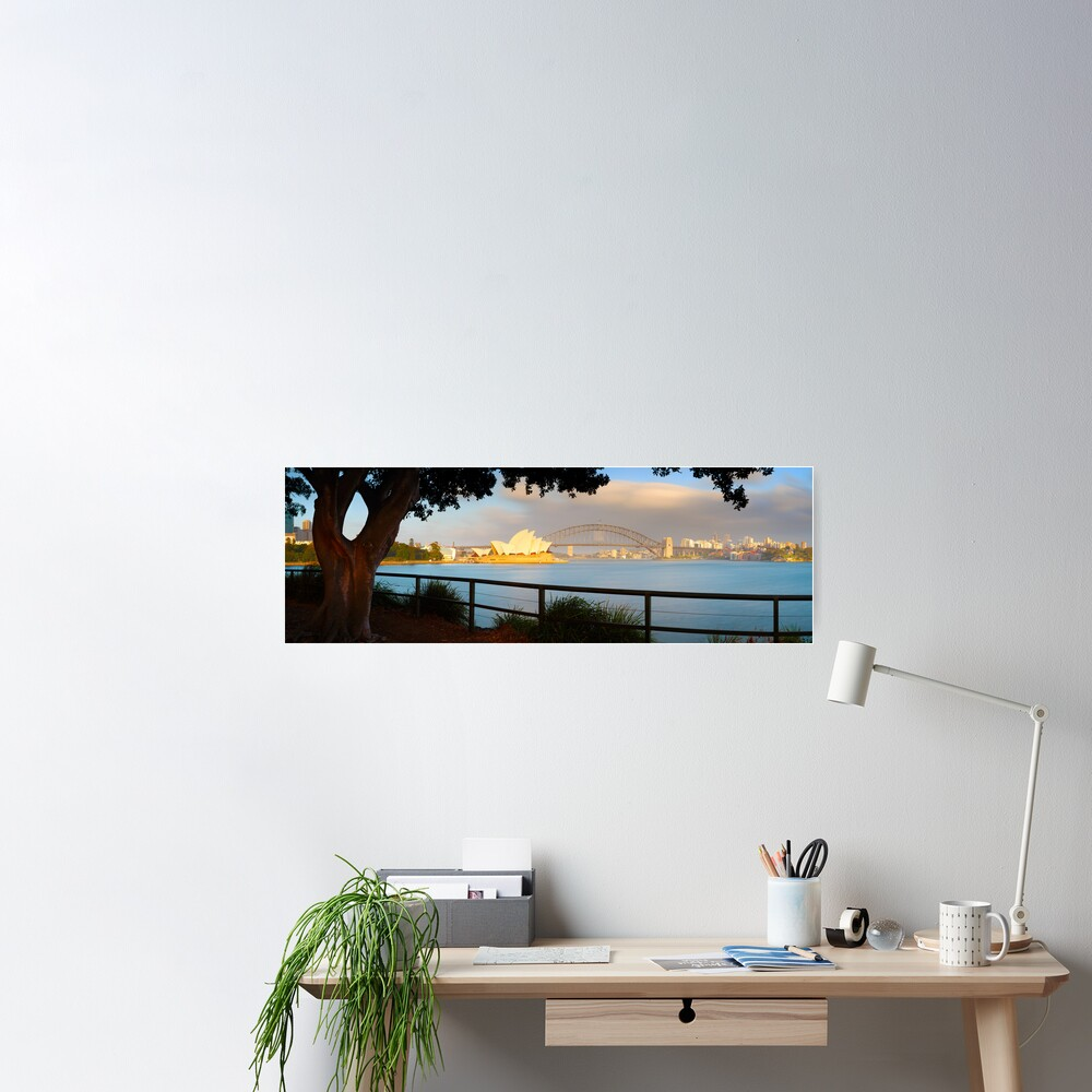 One Morning in Sydney, New South Wales, Australia Poster