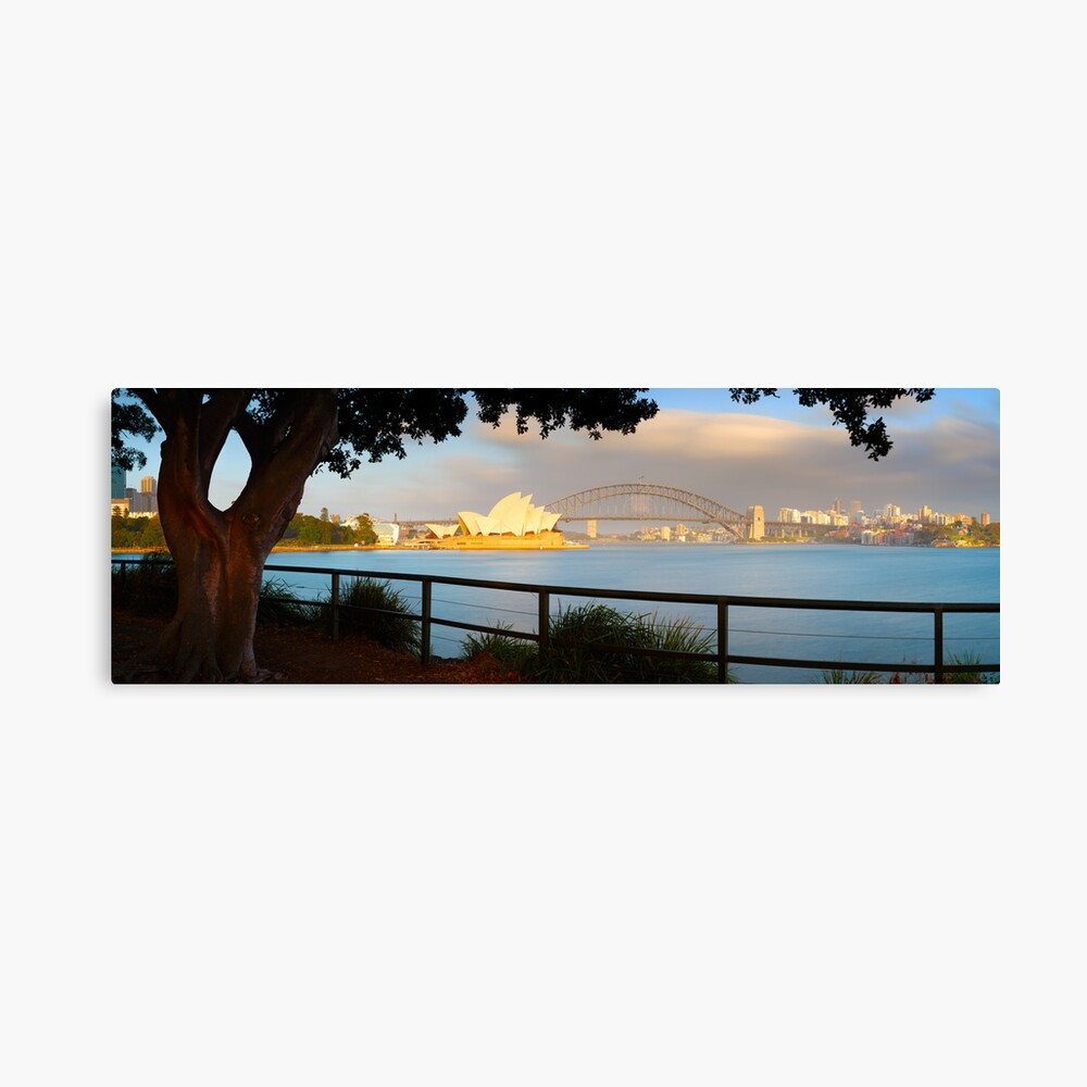 One Morning in Sydney, New South Wales, Australia Canvas Print