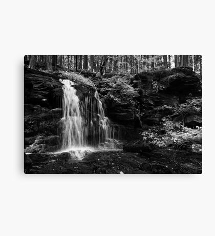 My Hidden Falls Canvas Print