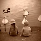 chillin with the swans by lorrayne