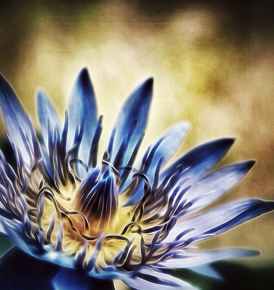 Lily in burned and blue by DerekEntwistle
