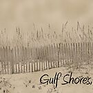 Sandbank of Gulf Shores by sacredmoments