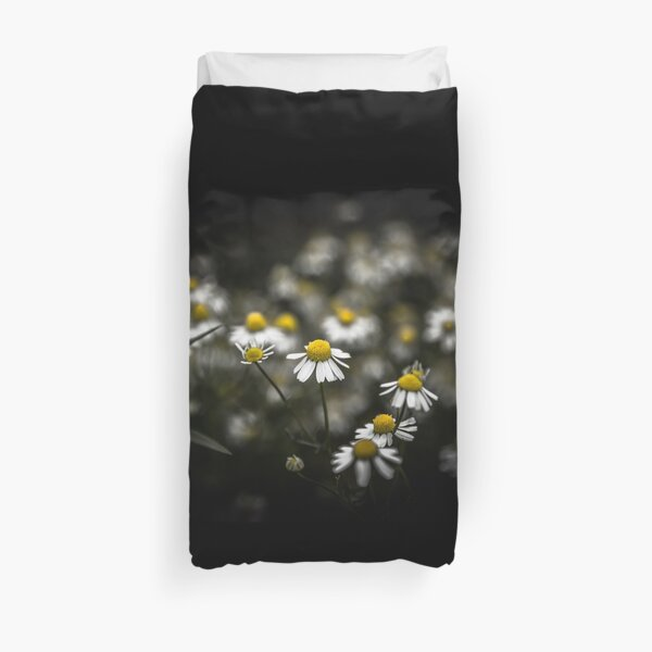 Daisies and black background (photo landscape) Duvet Cover