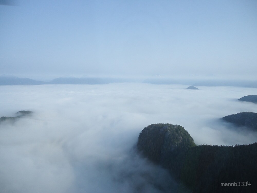Foggy helicopter ride by mannb3334