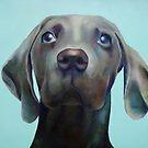 Little Weimaraner Looking Up by Jennifer Gibson