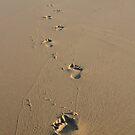 Footprints Baptism Card by Samantha Higgs