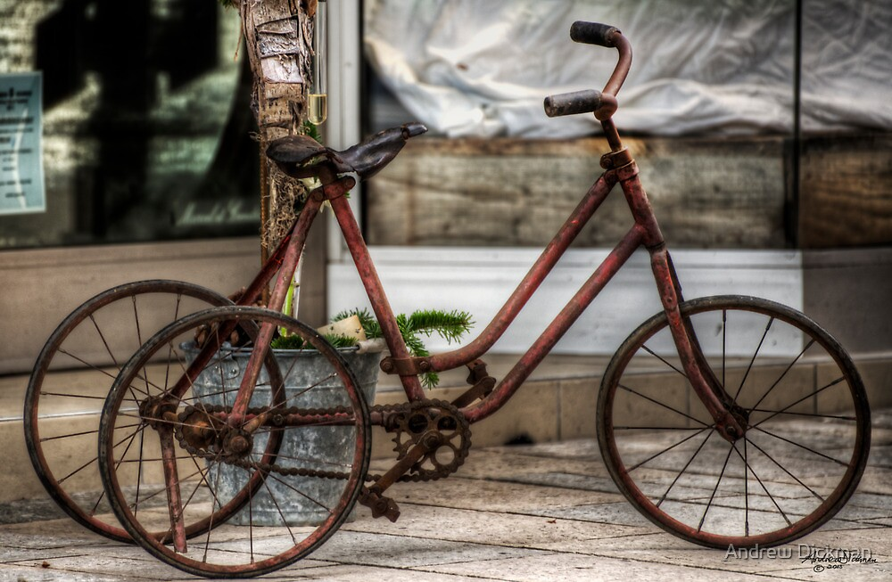 Tricycle by Andrew Dickman