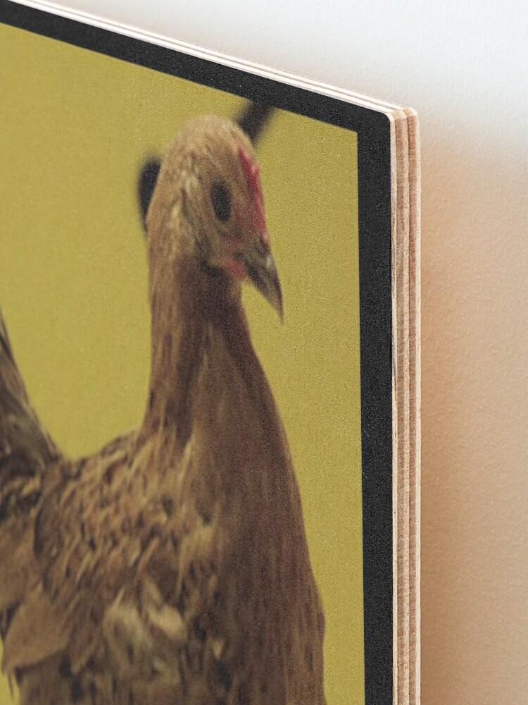 Alternate view of Herzog's Dancing Chicken Mounted Print
