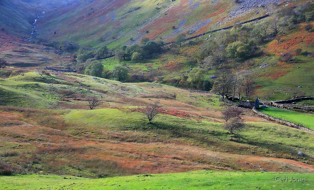 LAke District Landscape by Ceri Jones