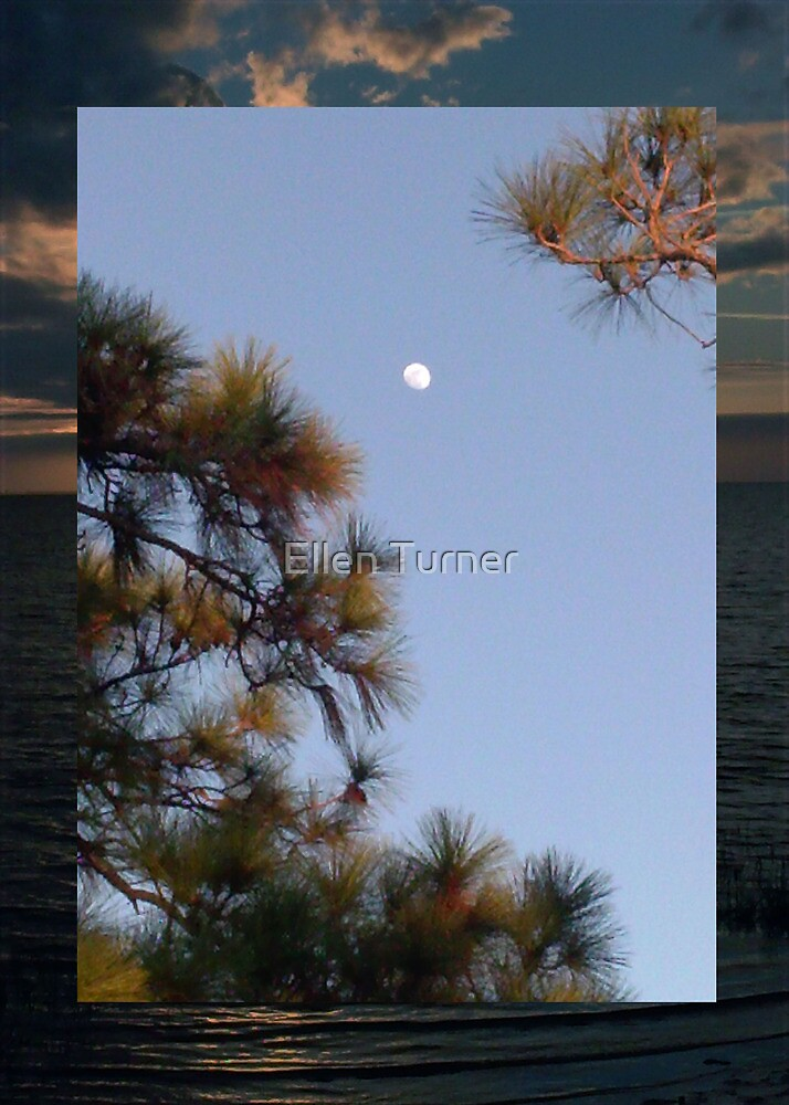 Moon as sun is setting, Anclote Gulf Park by Ellen Turner