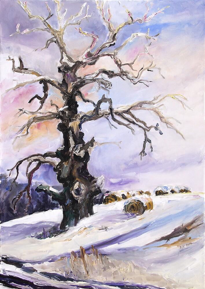 I Have Got Stories To Tell - Old Oak Tree In Mecklenburg, Germany by Barbara Pommerenke