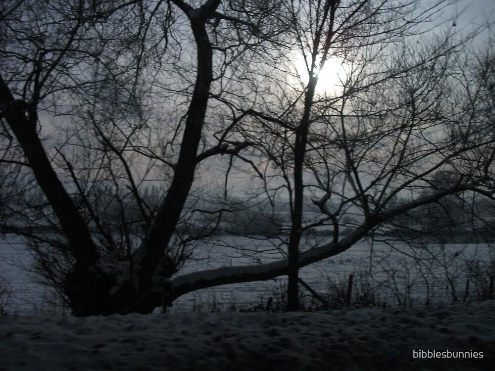 wintery by bibblesbunnies