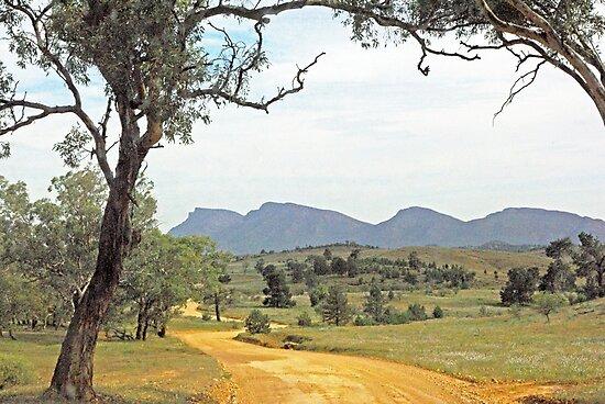 Winding road - Flinders Ranges Way by imaginethis