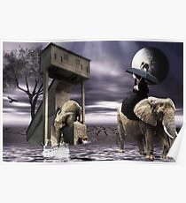 Illusions.... Poster