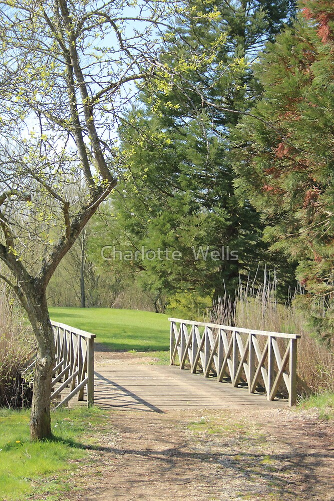 Wooden Bridge by Charlotte  Wells