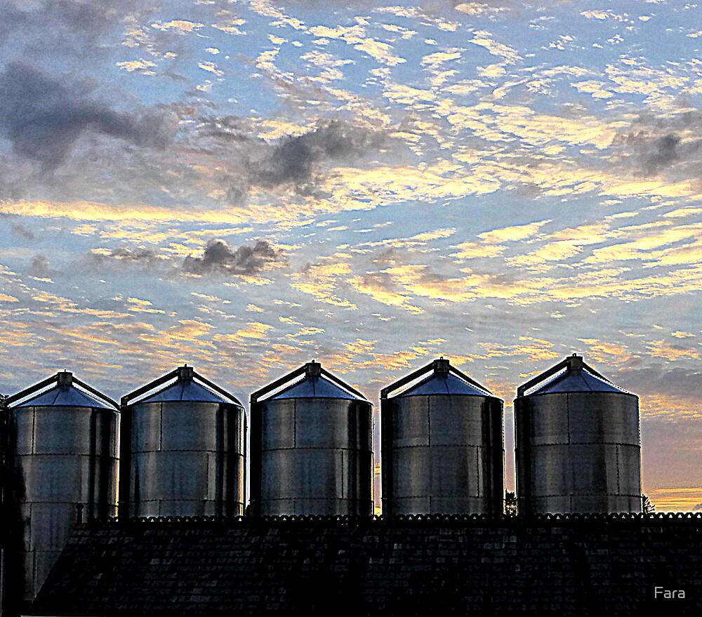 Grain Silos And Summer Clouds by Fara