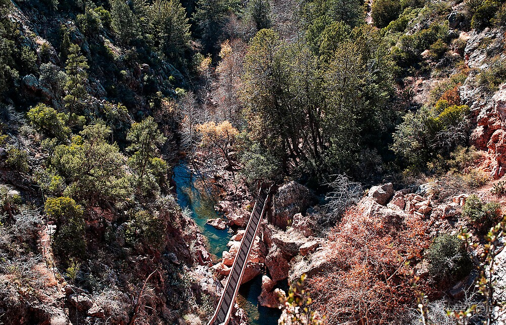 View into Pine Creek Canyon by Lee Craig
