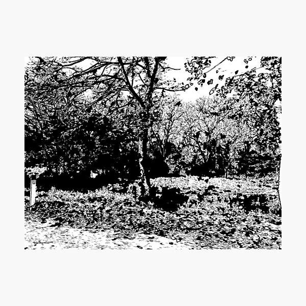 Manifestations of Eternity, 1-75 Photographic Print