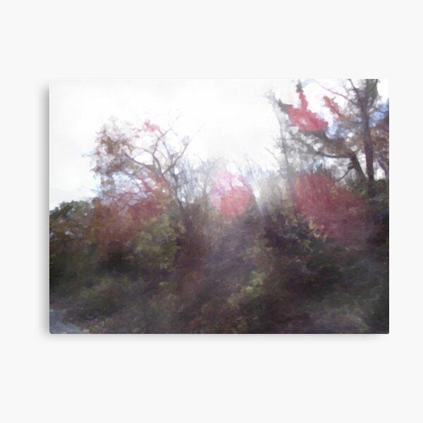 Manifestations of Eternity, 2-20 Canvas Print