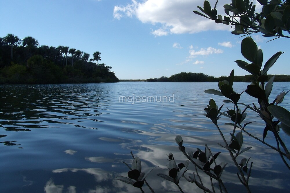 Riverview by msjasmund
