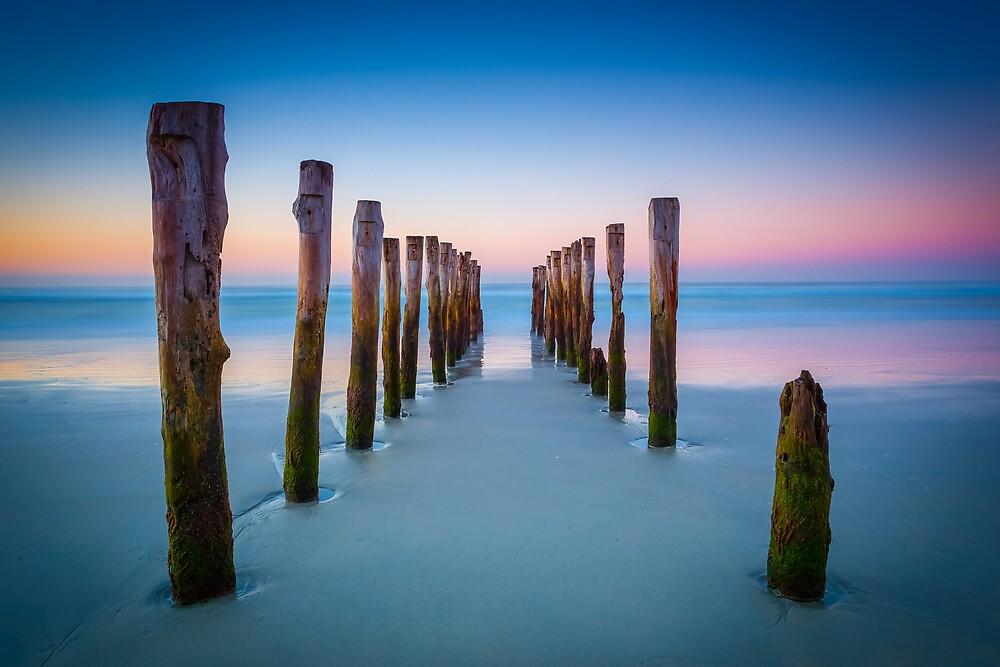 St Clair Beach by Michael Cockerill