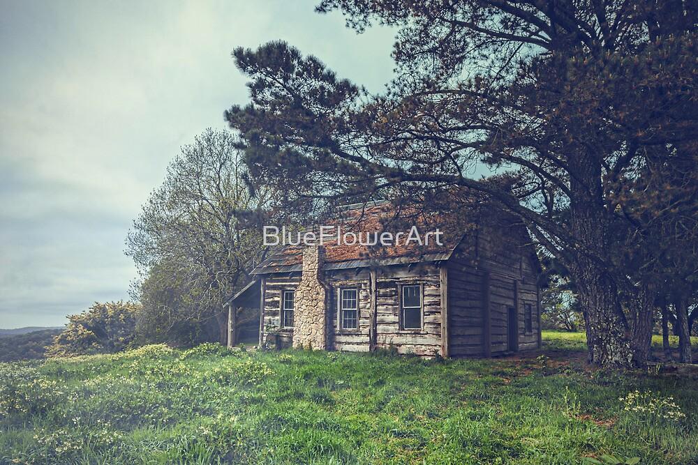 Abandoned Cottage by BlueFlowerArt
