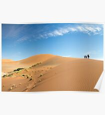 On top of the dunes Poster