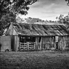 Louttits Shed by robpower