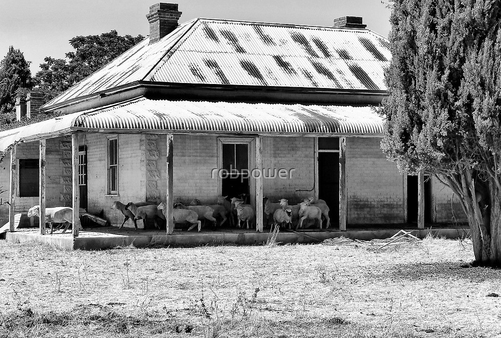 Sheep's House by robpower
