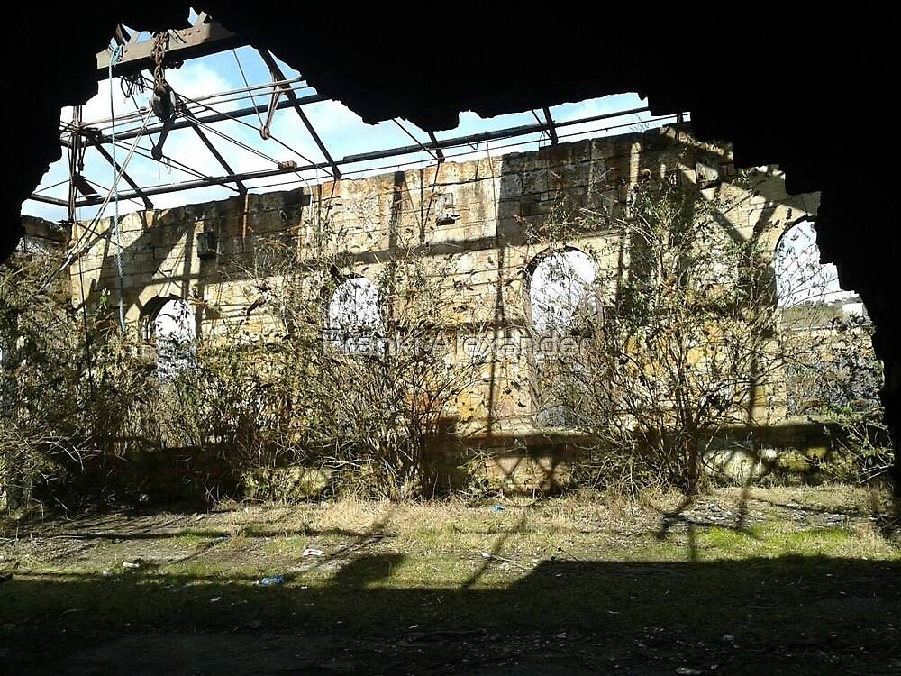 Abandoned structure (3) by Franki Alexander
