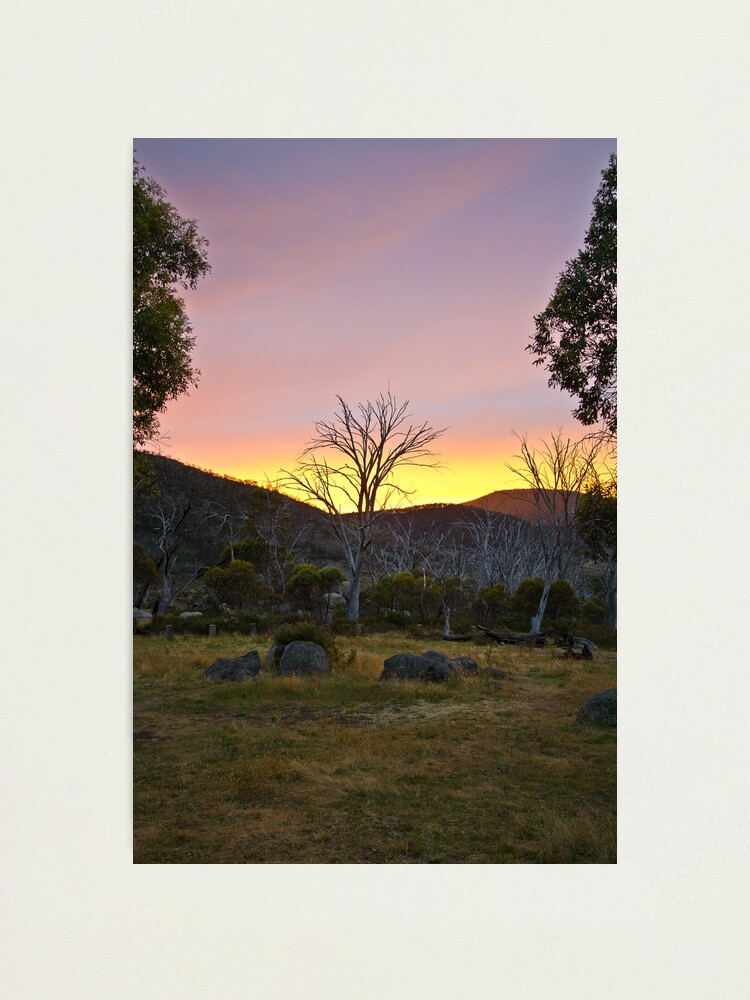 Alternate view of Morning Photographic Print