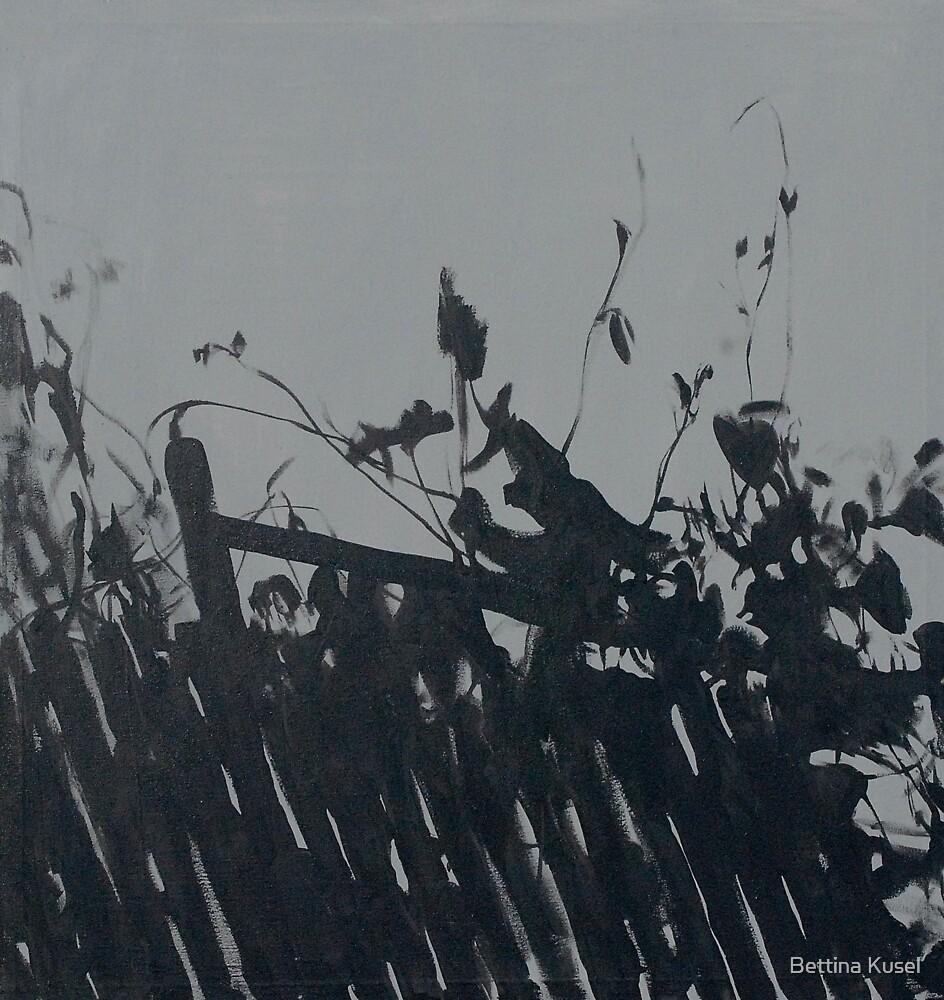 Monochrome by Bettina Kusel