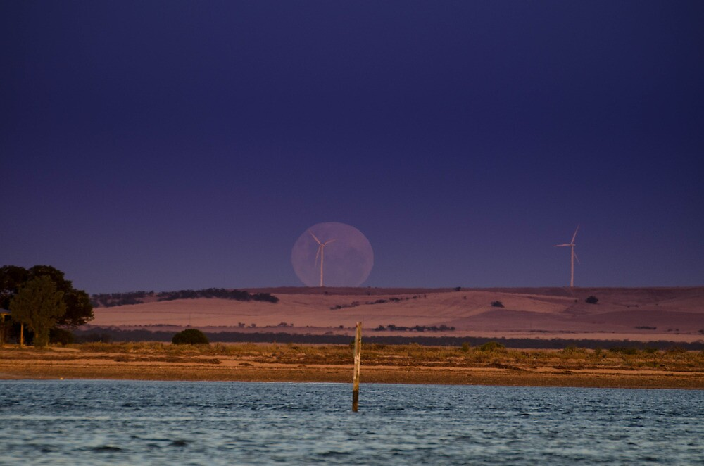 Full Moon OverThe Bay by Frank Smith