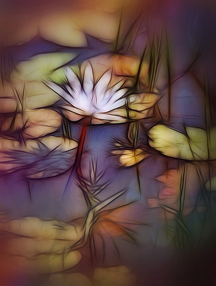 Painted lily by DerekEntwistle