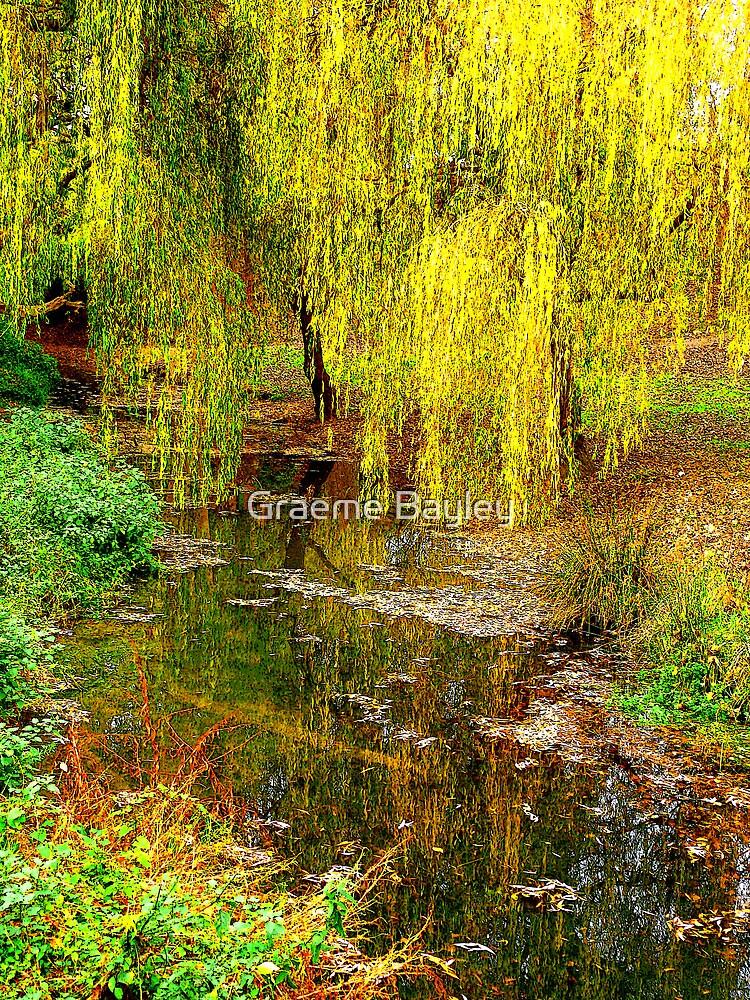 The Garden Stream by Graeme Bayley